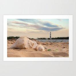 Seashells on the Seashore Art Print