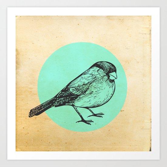 Spotted bird Art Print