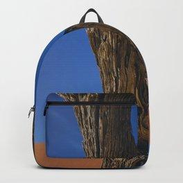 Petrified Tree Texture Deadvlei Namibia Backpack