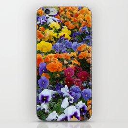 Pancy Flower 2 iPhone Skin