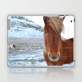 Stand Out - Icelandic Horse Laptop & iPad Skin
