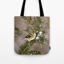 Professor Goldfinch Tote Bag
