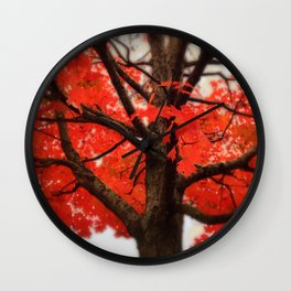 Red Maple Tree - 2013 Wall Clock