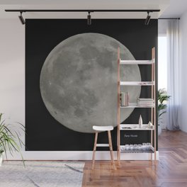 Tara's Moon Wall Mural
