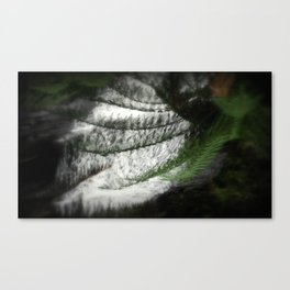 Fern filtering Waterfall Canvas Print