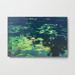 Lily Pond II Metal Print