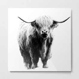 Newspaper Print Style Highland Cow. Scotland, Bull, Horns. Metal Print