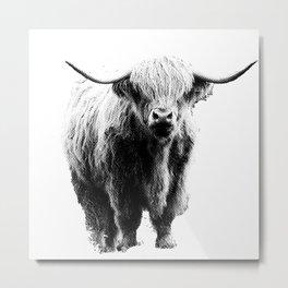 Newspaper Print Style Highland Cow. Scotland, Bull, Horns. Metal Print