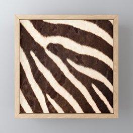Zebra #decor #society6 #buyart Framed Mini Art Print