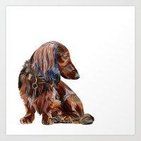dachshund Art Prints featuring Dachshund by Anne Hviid Nicolaisen