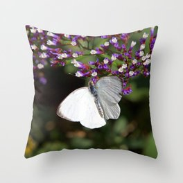 Great Souther White Butterfly Throw Pillow