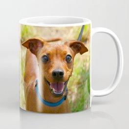Pinscher Smiling Blue Collar Dog Coffee Mug