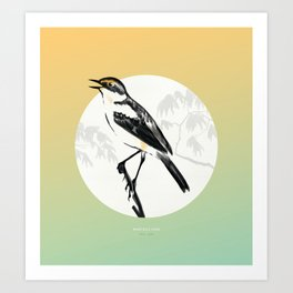 [9.13—9.17] Wagtails Sing Art Print