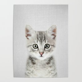 Kitten - Colorful Poster