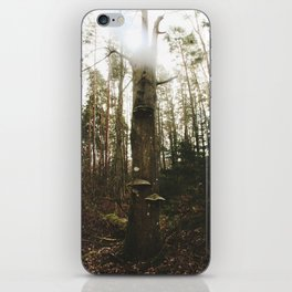 Tree in the woods iPhone Skin