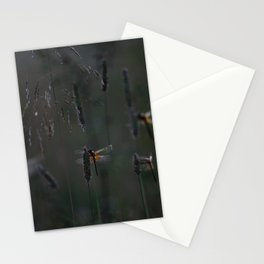 night's lodging Stationery Cards