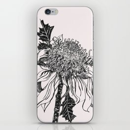 Australian waratah native flower iPhone Skin
