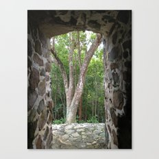 Window to the Woods, St. John, Virgin Islands, Sugar Mill Stone Ruins,  Canvas Print
