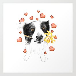 Border Collie And Hearts Art Print