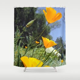 Take The Scenic Route Shower Curtain