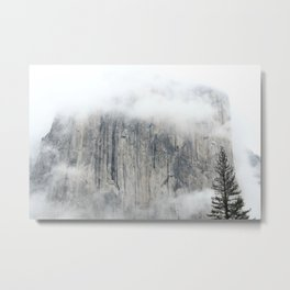 Misty in the Park Metal Print