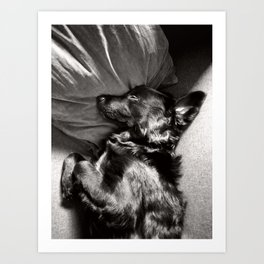 Sleeping Fenrir Art Print
