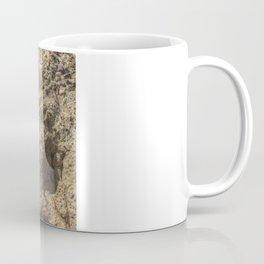 Succulent Growing Thru Rocks Coffee Mug