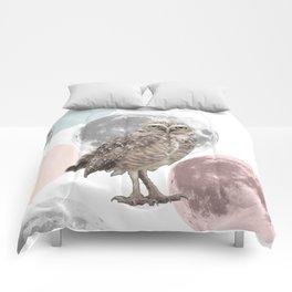 SOLE Comforters