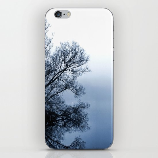 Swans in the Mist iPhone & iPod Skin