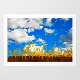 clouds+blue+yellow+fence Art Print