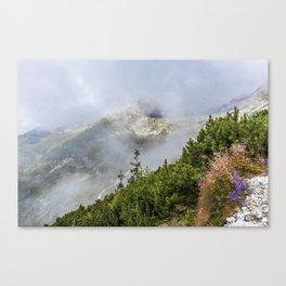Slovak Tatras Canvas Print