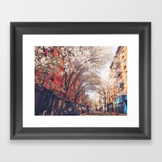 NYC Cherry Blossoms on the Lower East Side Framed Art Print