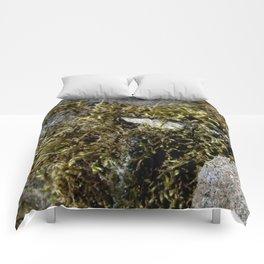 Nature's Mossenger Comforters