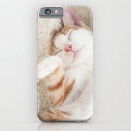 Sleeping baby ginger and white tabby kitten iPhone Case