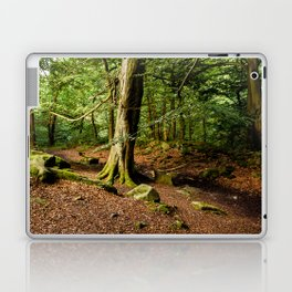 Woodland Path Laptop & iPad Skin