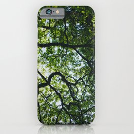 Canopy iPhone Case