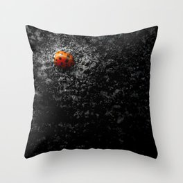 Lovely Ladybug Throw Pillow