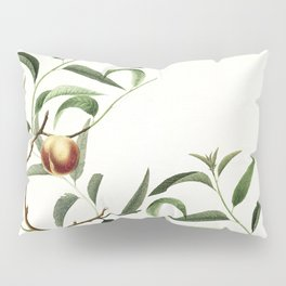 The golden apples of the sun version II Pillow Sham