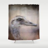 wildlife Shower Curtains featuring Poised - Ostrich - Wildlife  by Jai Johnson