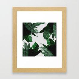 Banana Palm Leaves Framed Art Print