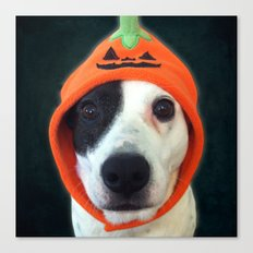 Pumpkin Dog Canvas Print
