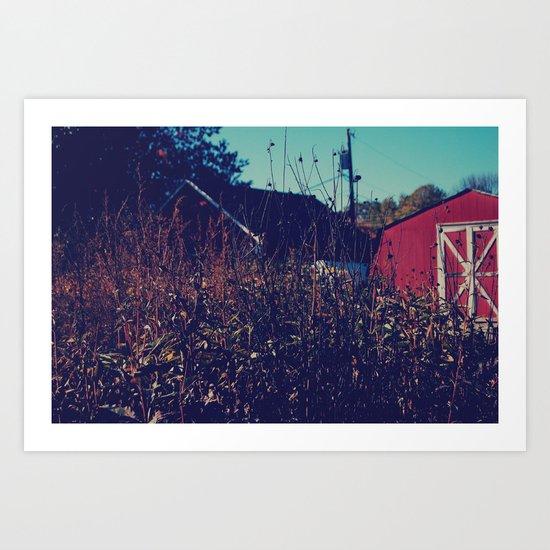 Barn Fall Art Print