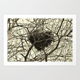Heart-Shaped Nest Art Print