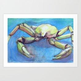 Crab Study Art Print