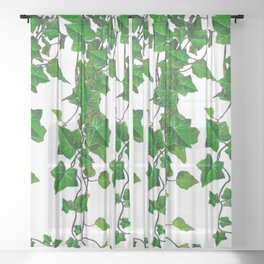 TRAILING VERDANT GREEN IVY LEAVES & VINES ON WHITE Sheer Curtain
