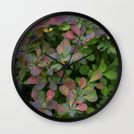 Japanese Barberry Leaves Wall Clock