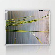 Evening Reeds Laptop & iPad Skin