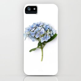 Blue hydrangea flowers iPhone Case