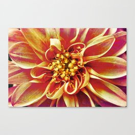 July Canvas Print