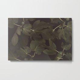 Botanical I _ Night Metal Print